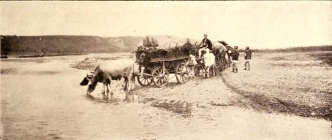Care ţărăneşti, în 1906