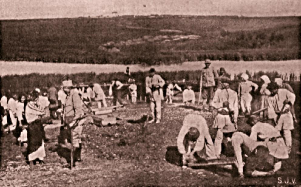 Ţărani ucraineni din Galiţia, săpând tranşee
