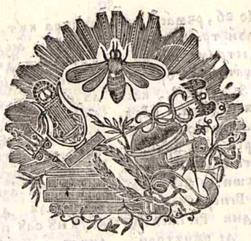 1829 Albina romaneasca 2