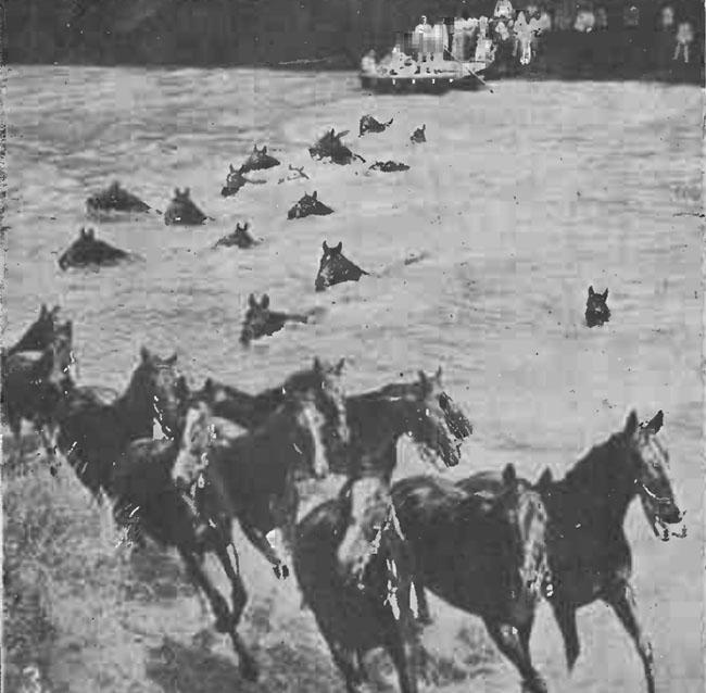 Gazeta Ilustrată din 14 martie 1915