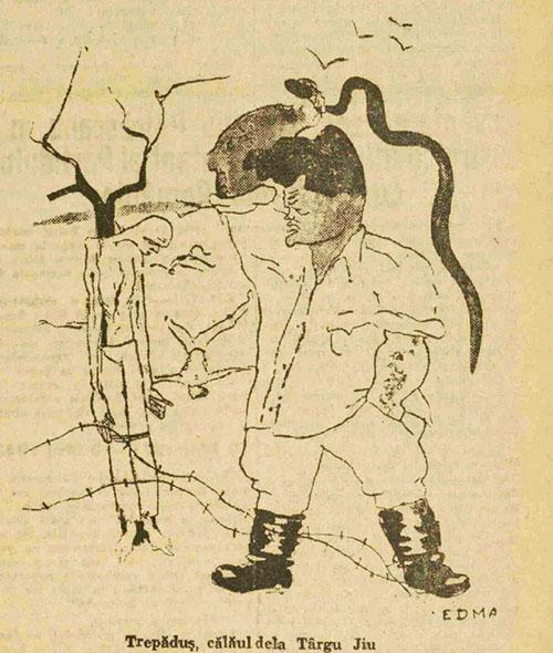 1945 Trepăduș