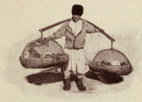 Negustor de păsări