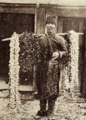 Negustor de usturoi și ardei iuți