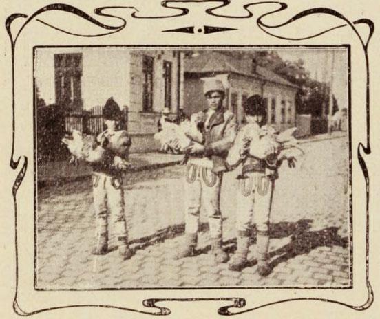 Vânzători de gâște