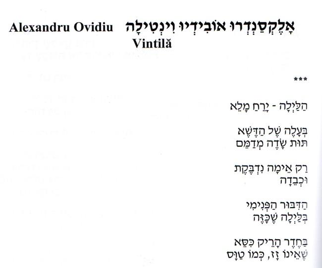 Alexandru Ovidiu Vintila poem