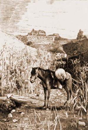Suceava, Cetatea văzută de la Şipote – Rudolf Bernt (1844-1914)