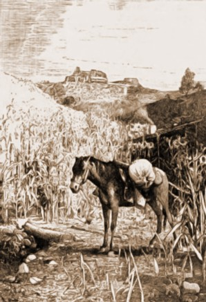 Suceava, Cetatea văzută de la Şipote – desen de Rudolf Bernt (1844-1914)
