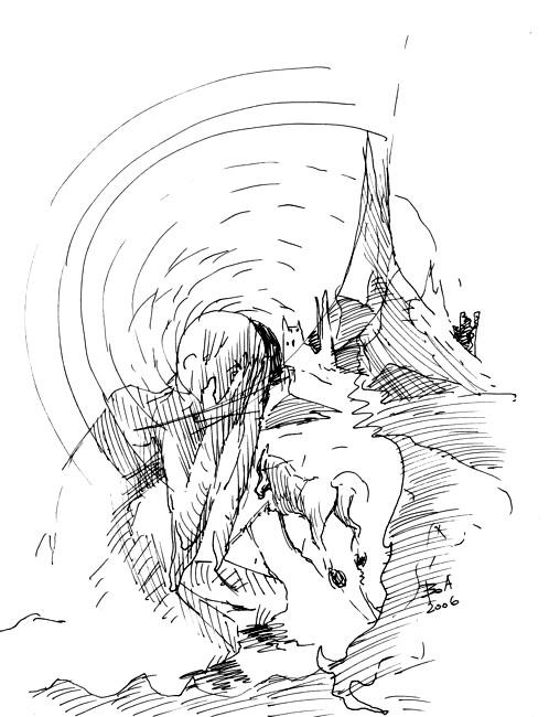 Desen de BOA