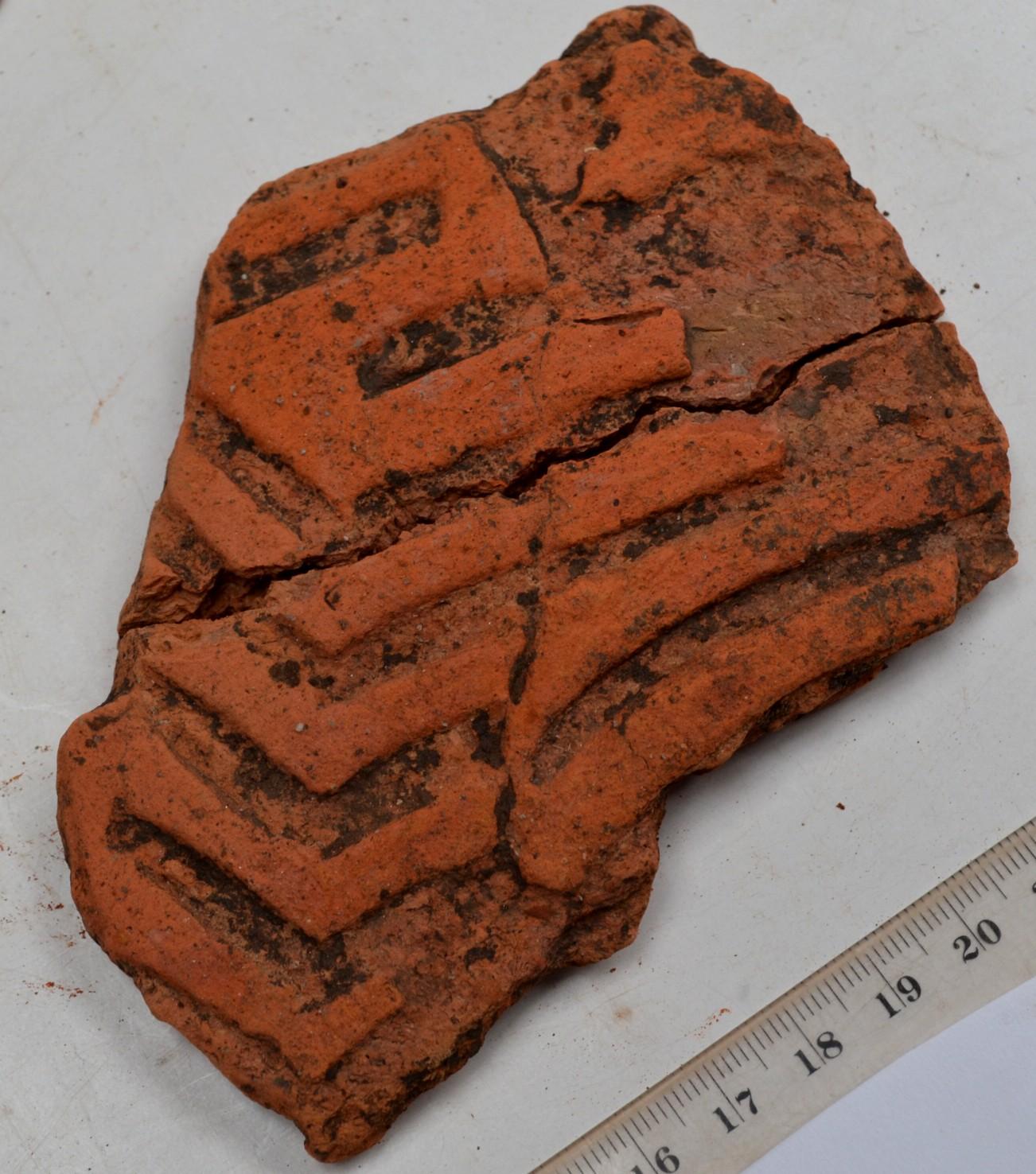 Gammadioane echinocţiale, la Baia (anul 5000 î. H.)