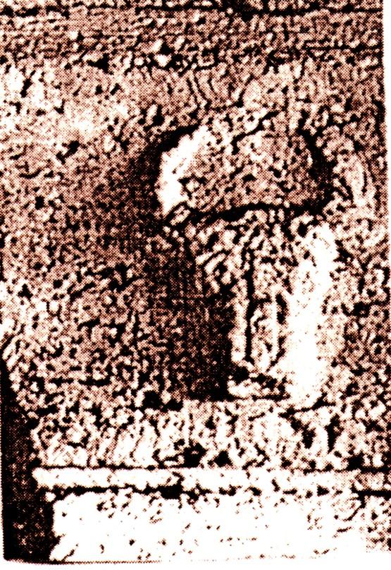 Capul de bour, într-un relief selgiucid de pe moscheea de la Cardakhan, Denizli, anul 1230