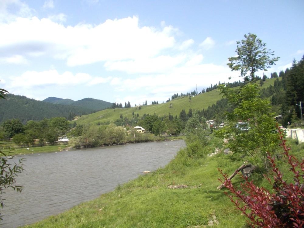 Bucovina 9