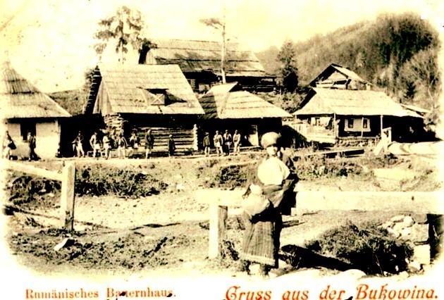 Bucovineni ilustrata