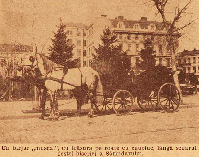 București birjar muscal în Sărindar