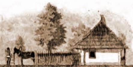 Casă lipovenească din Fântâna Albă – din Kaindl (1866-1930)