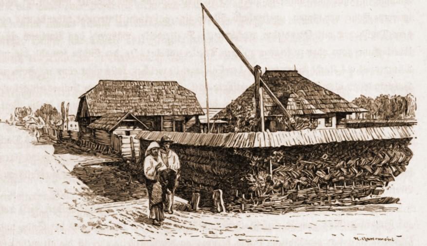 Casă românească din Horodnic – desen de Mattias Adolf Charlemont (1820-1871)