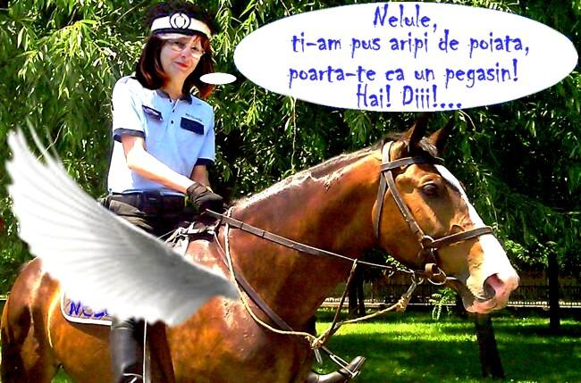 """Carmen Marcean, """"călărindu-l"""" pe Nelu, spre şleaul culturnic"""