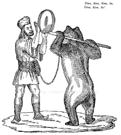 Calicul 1886