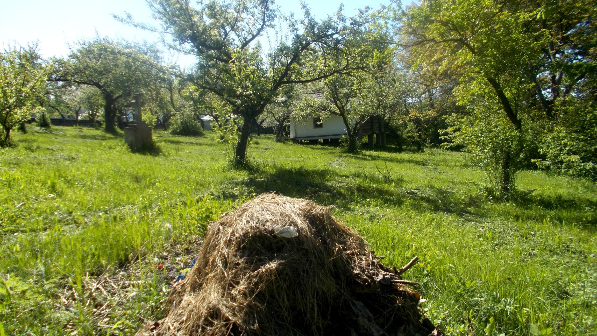 Casa de la Straja, montată după gunoaiele din Călineşti, drept casă... a Eminovicienilor