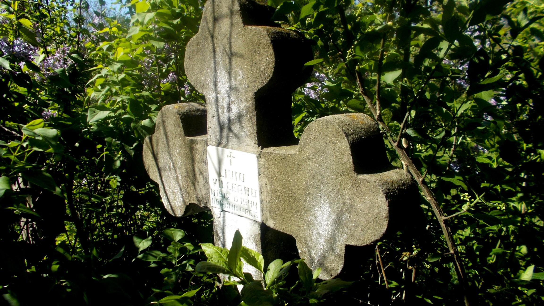 Un mormânt sugrumat de tufe, urzici şi boz