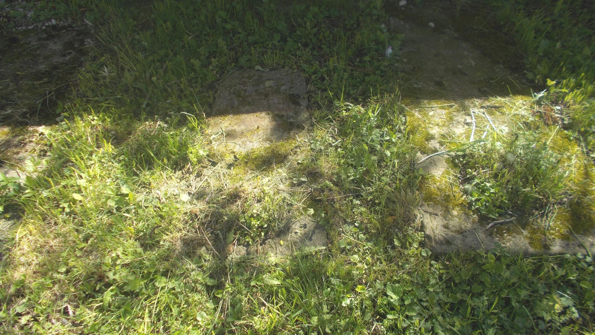 Pietre mormântale pe cale de a fi luate în stăpânirea vegetaţiei