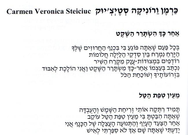 Carmen Veronica Steiciuc poem