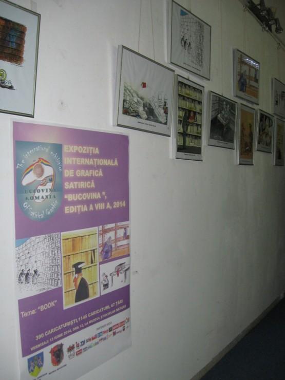 O expoziţie ignorată - fotografie de Tiberiu Cosovan