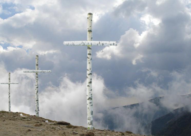 Cruce alba de mesteacan