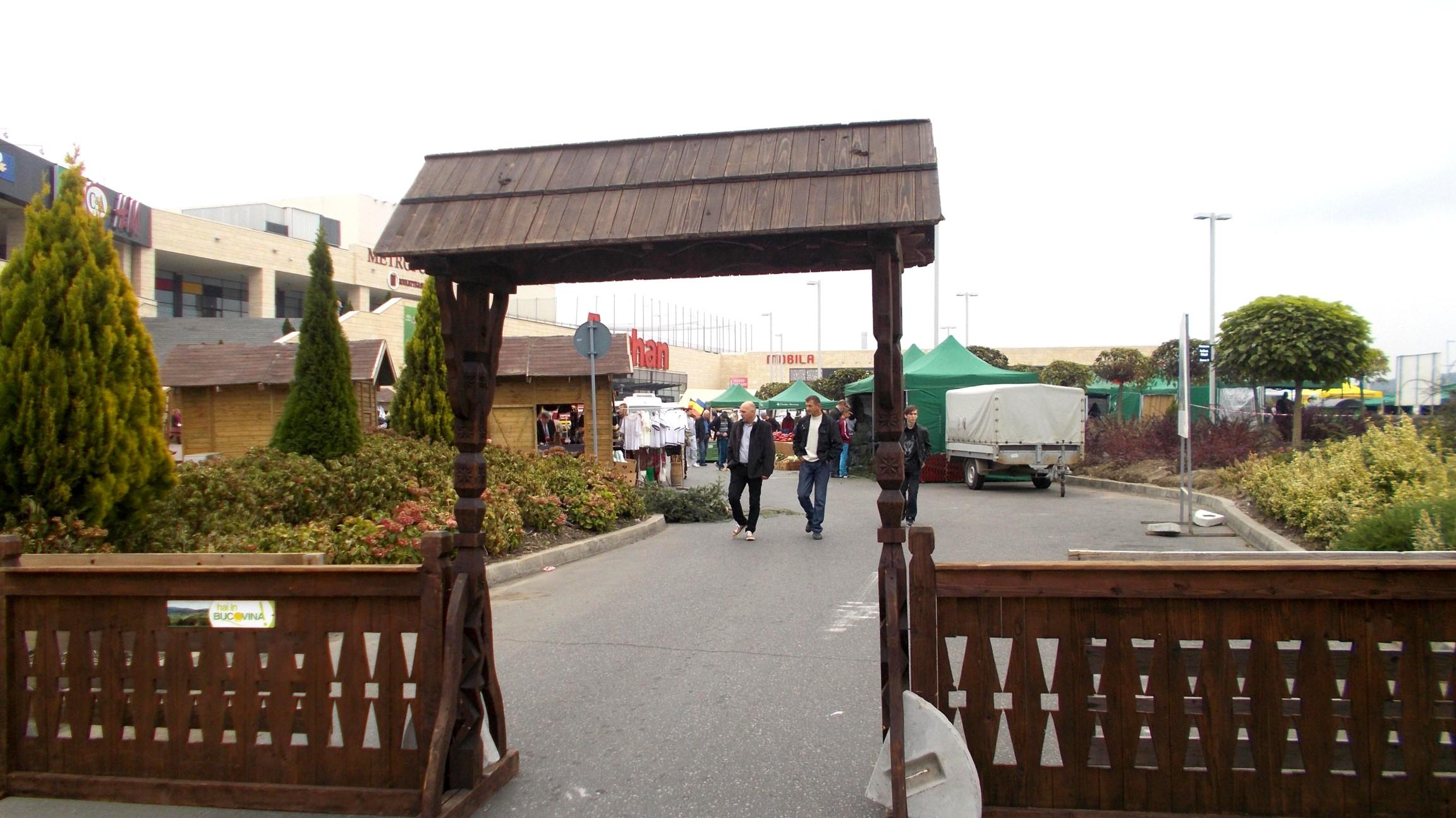 """Poarta electorală a unui penibil """"produs"""" în Bucovina"""