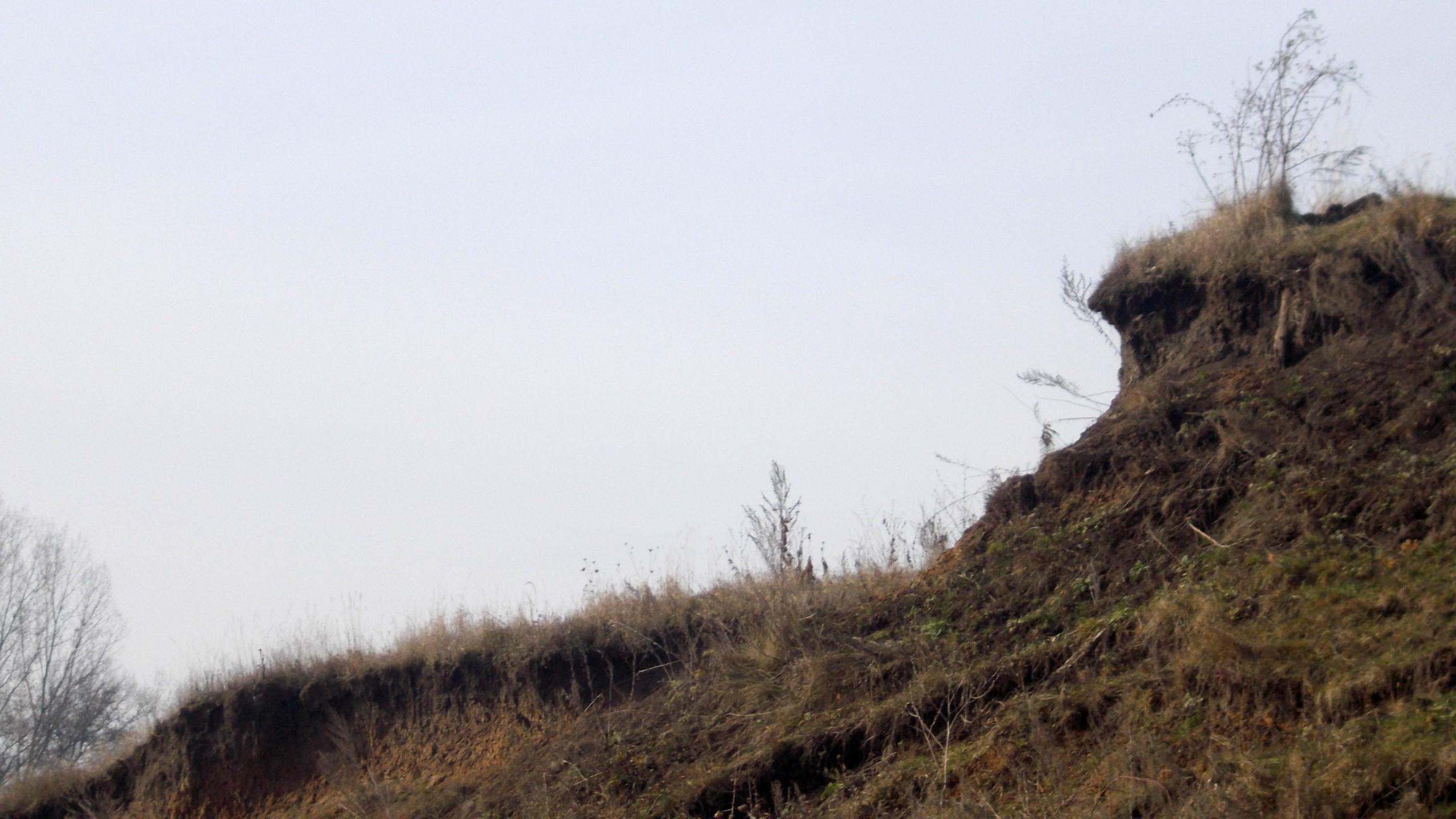 Dealul rădăcinilor nucului