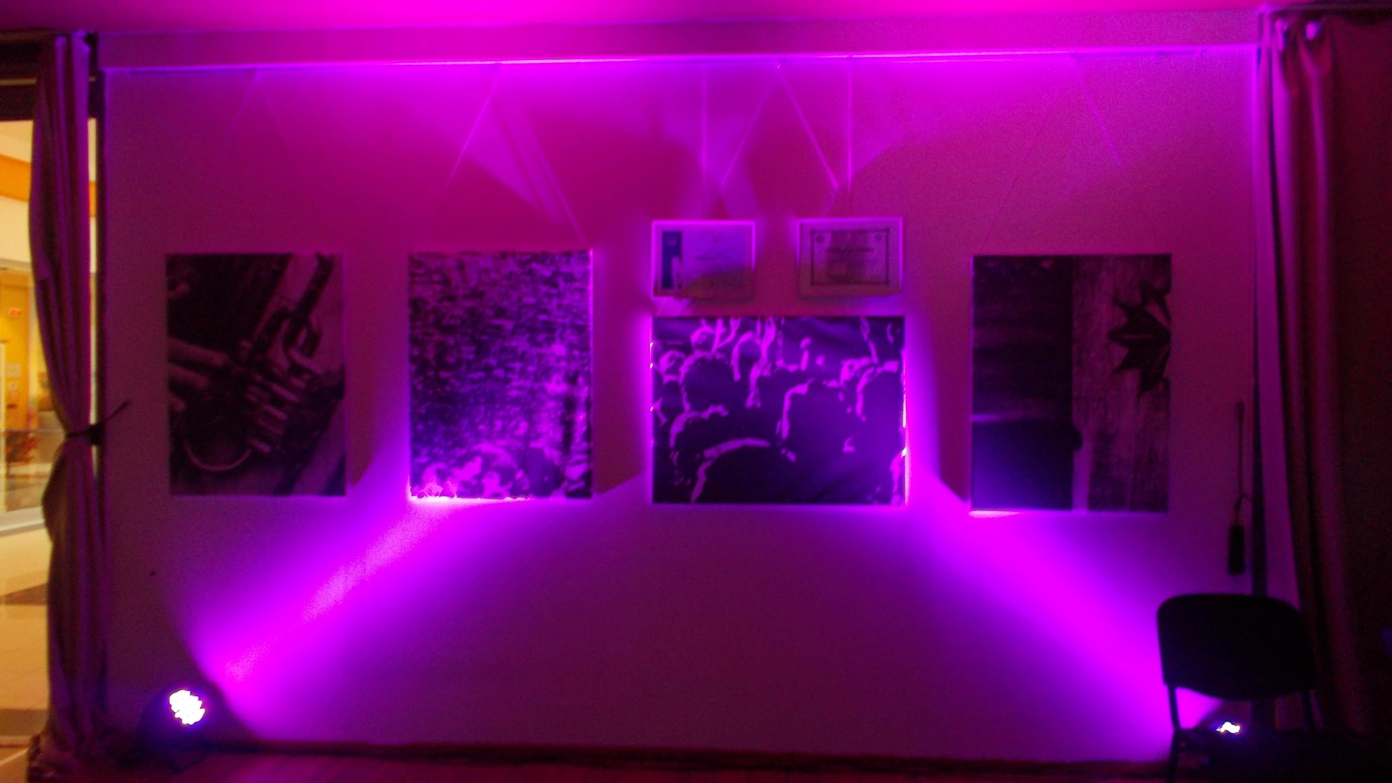 Expoziţia, în lumină vie