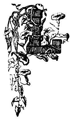 FAMILIA 1879 desen