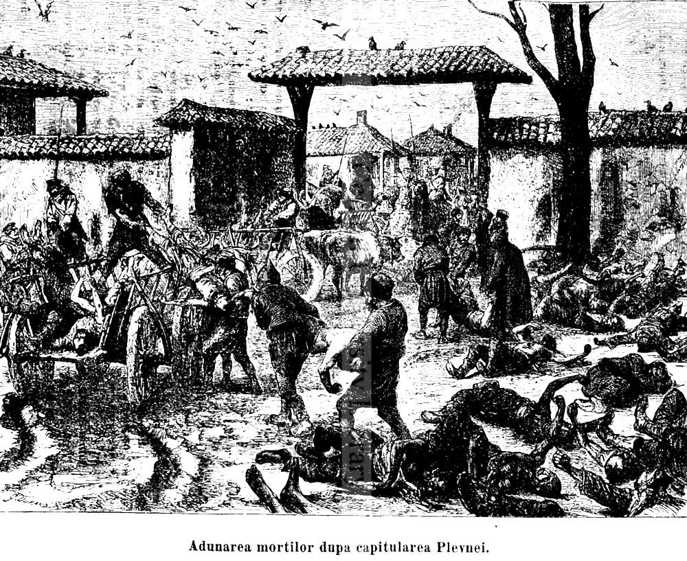 Grivita mortii 1878_014_5-5
