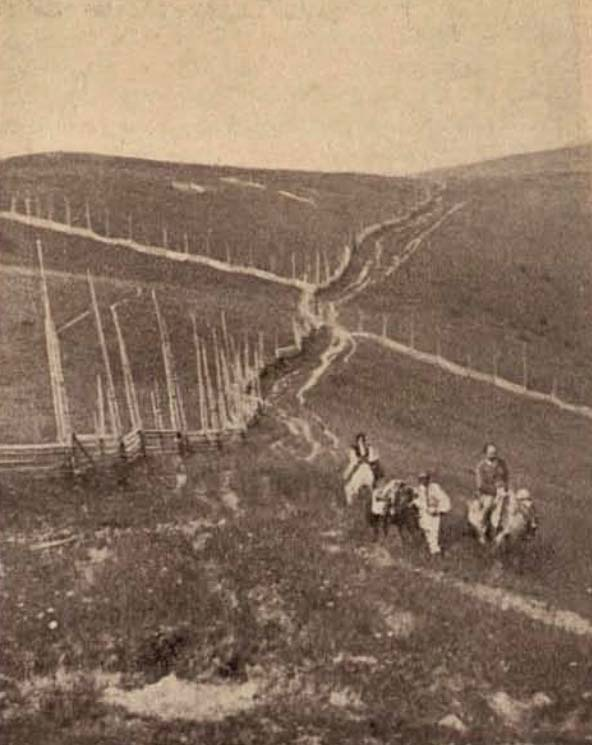 Garduri huţule, la 1300 m - foto Krepler