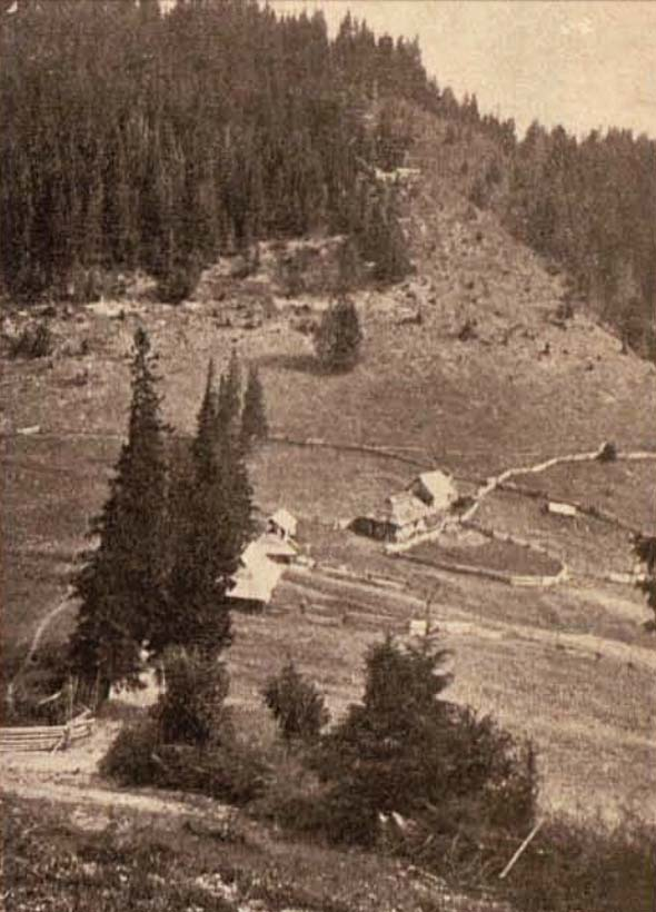 Pe muntele Berdo - foto Krepler