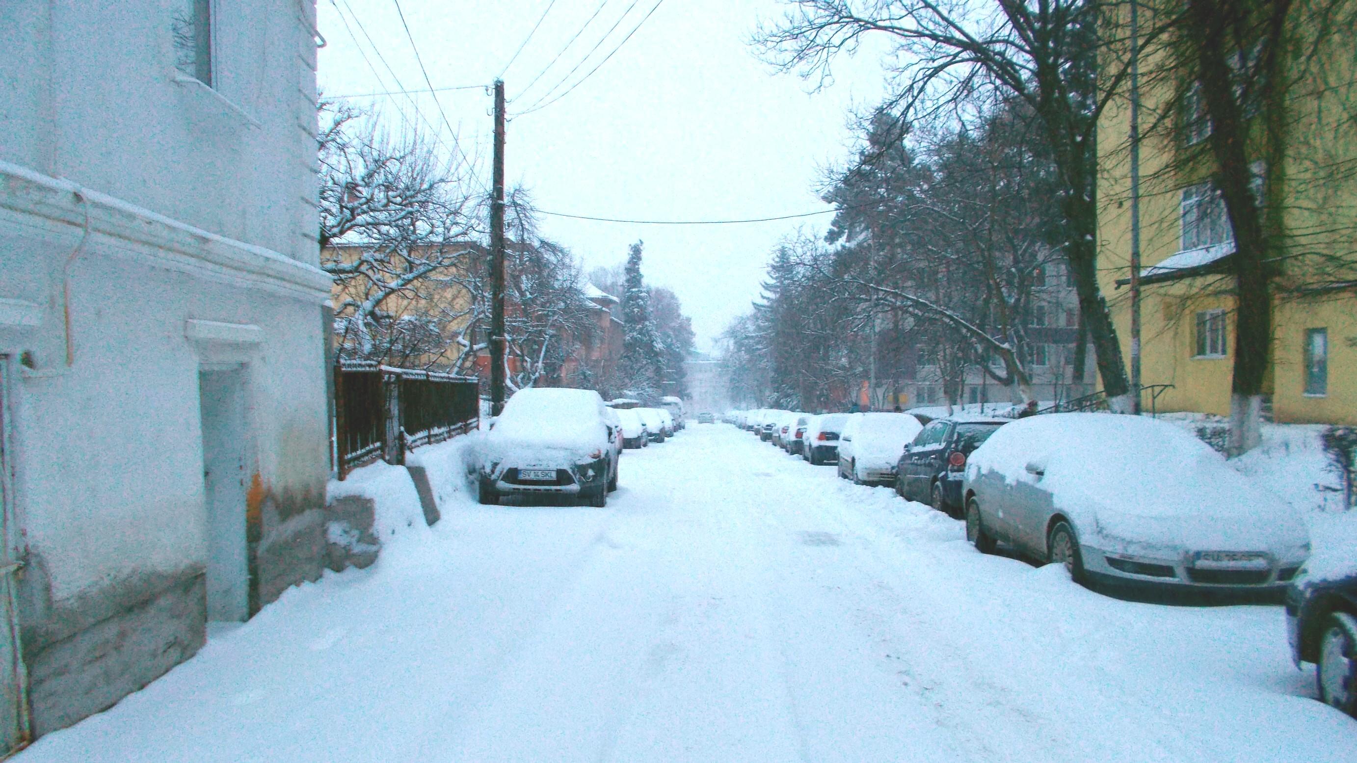 Ieri noapte a nins prin oraş, fiecare secol s-anvelit în ninsoare. Secolul, îmbrăcând singurătatea ca pe-o cămaşă de sare,