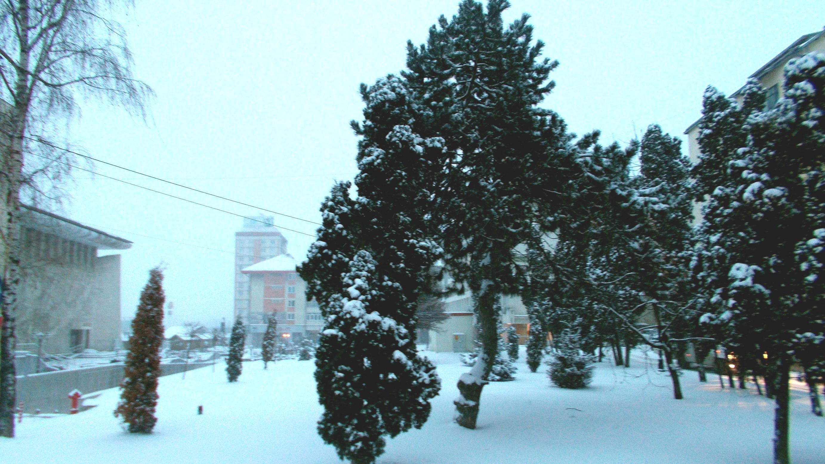 fructele-ncep prin cămări să transpire, fânul fumegă-n grajd şi-ntre timp noi om sta la o oală cu vin, pân' la cer ieri a nins peste câmp,