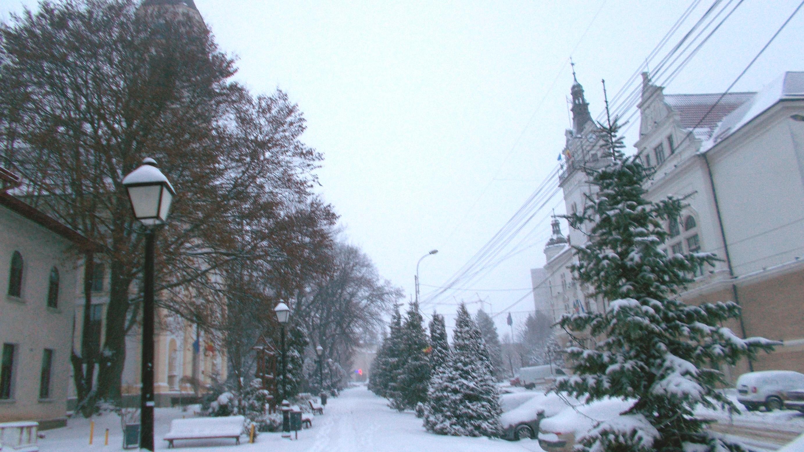 Iarna 9