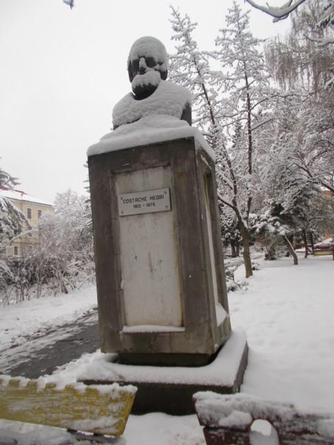 Iarna Costache Negri 2