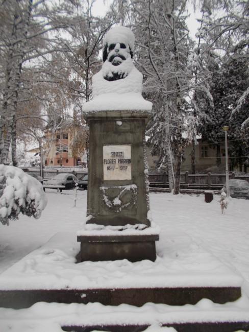 Iarna Simion Florea Marian 3