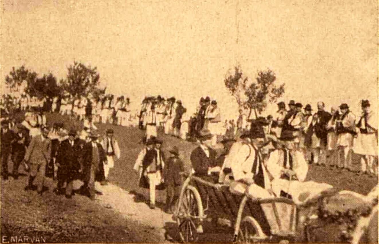 Împroprietărirea ţăranilor, la Bosanci