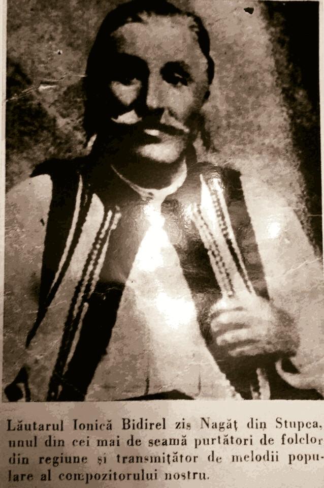 Ion Bidirel