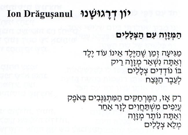 Ion Dragusanul poem