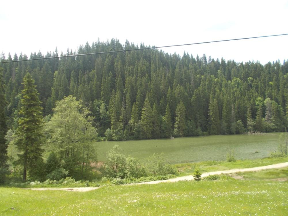 Lacu Rosu 12