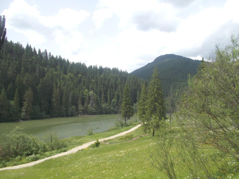 Lacu Rosu 7