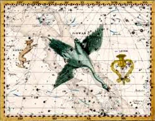 Constelaţia Lebăda, în viziunea lui Johann Bode