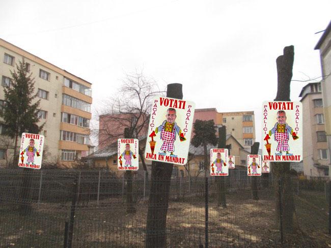 Copacii Sucevei: Votaţi pe Ion Lungu primar!