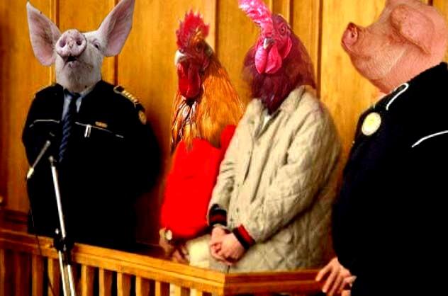 Găina şi Cocoşul: Onorat stat român, dacă nu ar fi existat porcii tăi, noi nu am fi căzut în păcat!