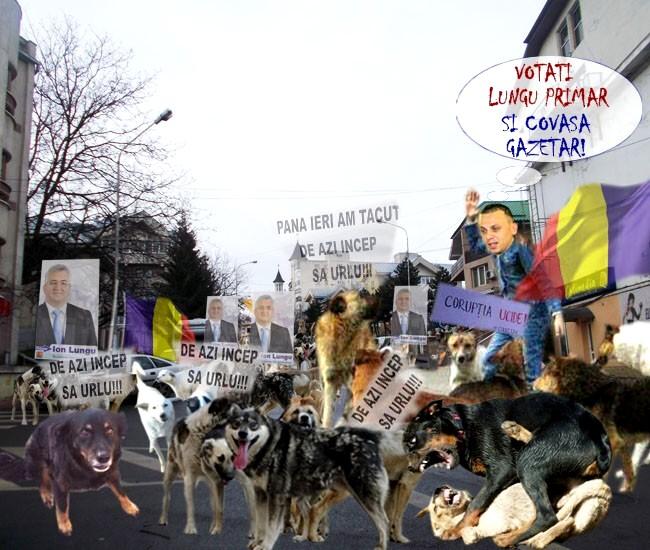 """Javrele: """"Vrem pe Lungu iar primar şi Covaşă gazetar!"""""""