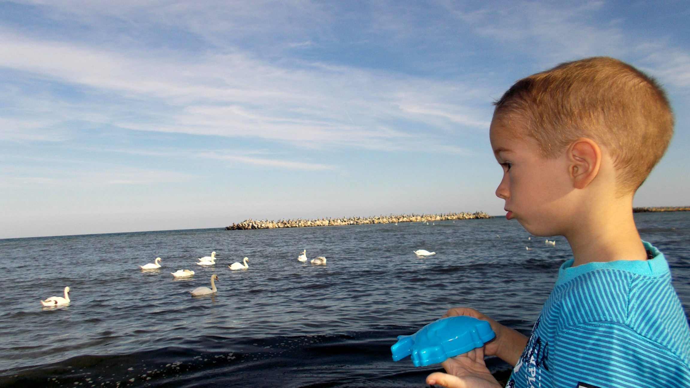 Marea Lebdele si baiatul
