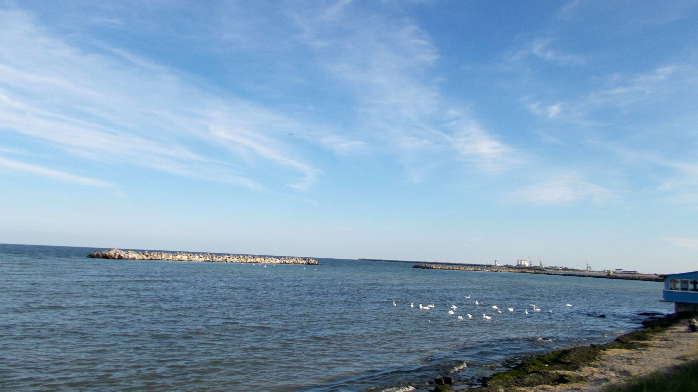 Marea cu lebede